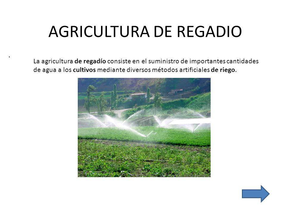 AGRICULTURA DE REGADIO.