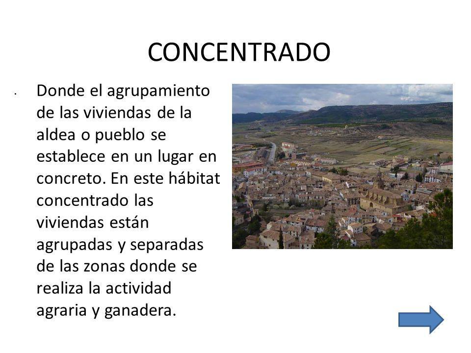 CONCENTRADO.