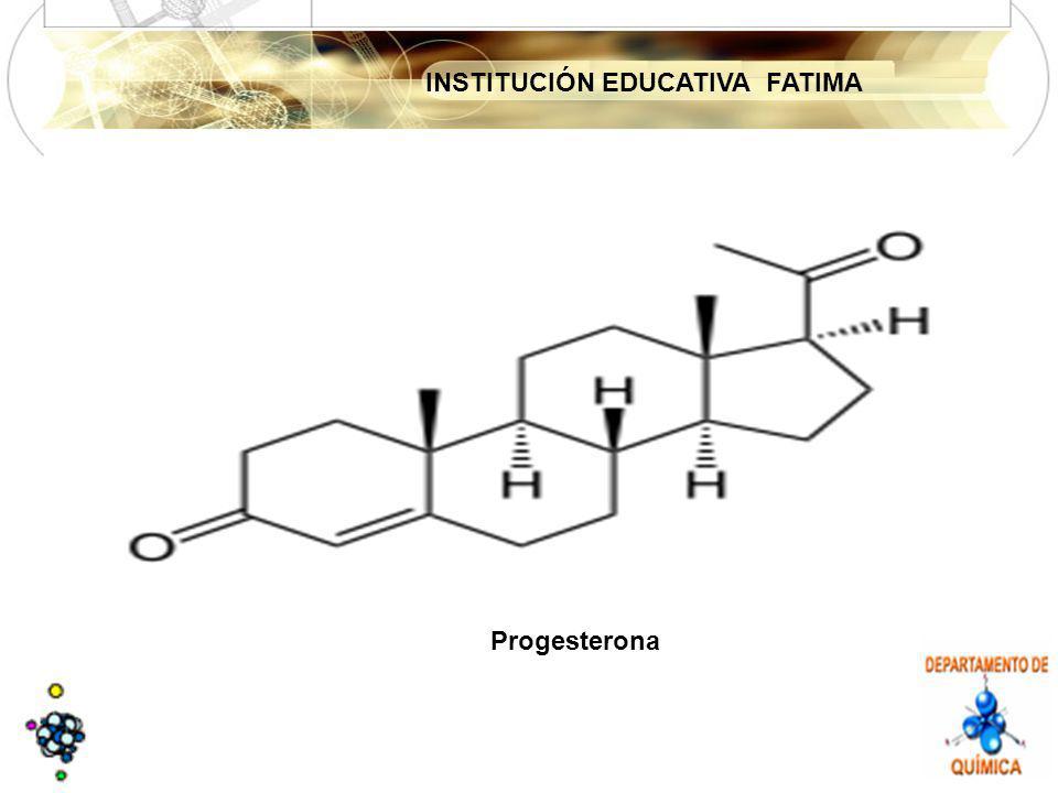 INSTITUCIÓN EDUCATIVA FATIMA Progesterona