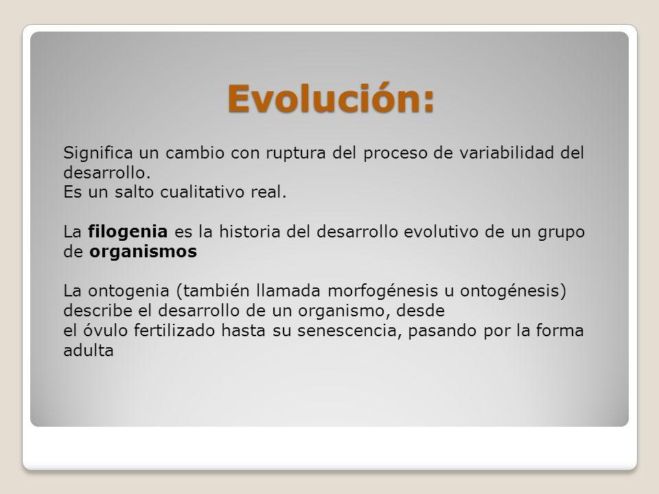 Evolución: Significa un cambio con ruptura del proceso de variabilidad del desarrollo. Es un salto cualitativo real. La filogenia es la historia del d