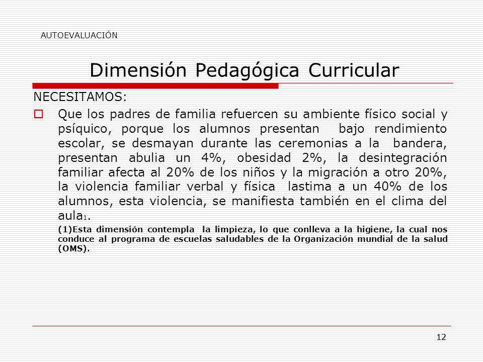 12 Dimensión Pedagógica Curricular NECESITAMOS: Que los padres de familia refuercen su ambiente físico social y psíquico, porque los alumnos presentan