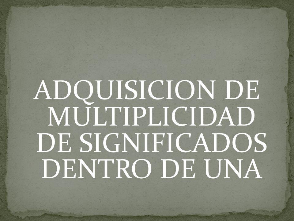 ADQUISICION DE MULTIPLICIDAD DE SIGNIFICADOS DENTRO DE UNA