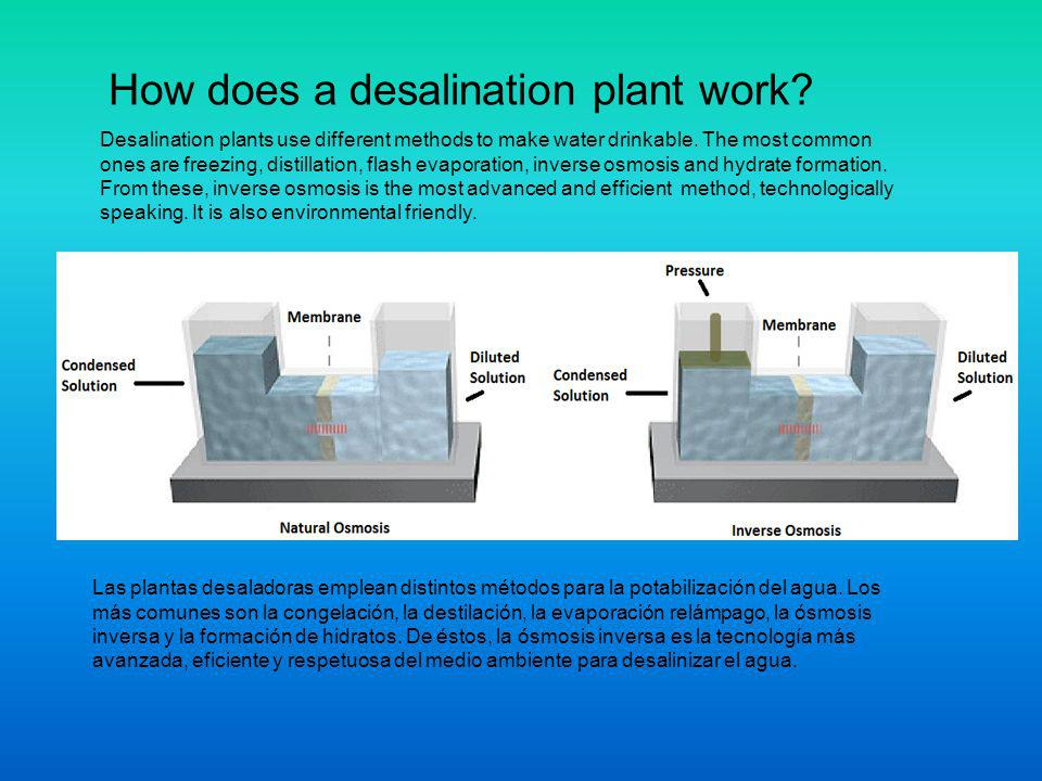 How does a desalination plant work.