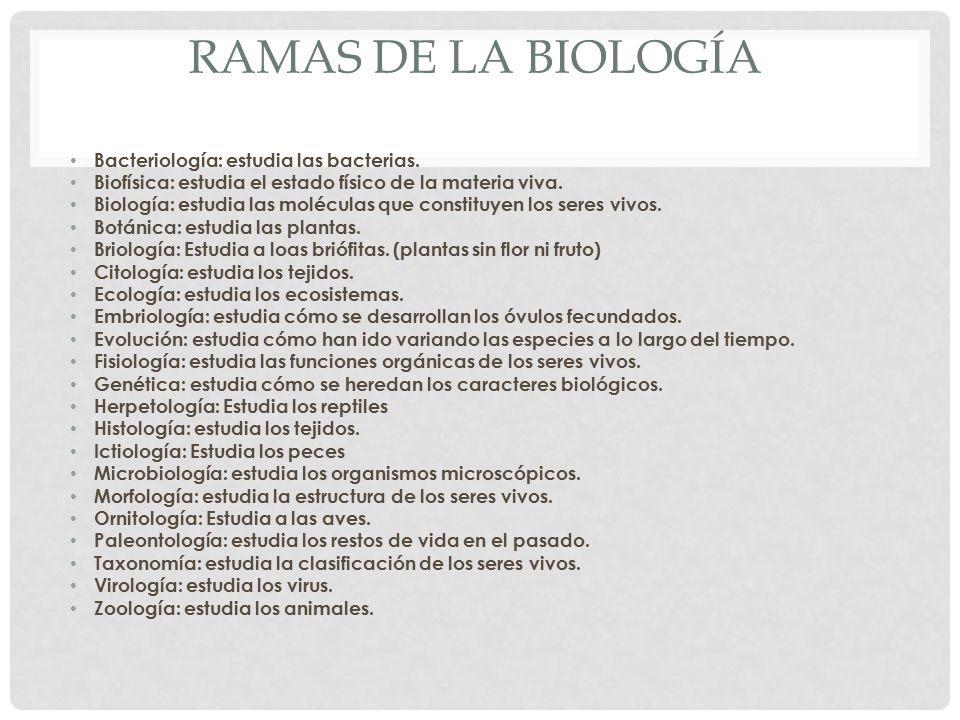 RAMAS DE LA BIOLOGÍA Bacteriología: estudia las bacterias. Biofísica: estudia el estado físico de la materia viva. Biología: estudia las moléculas que