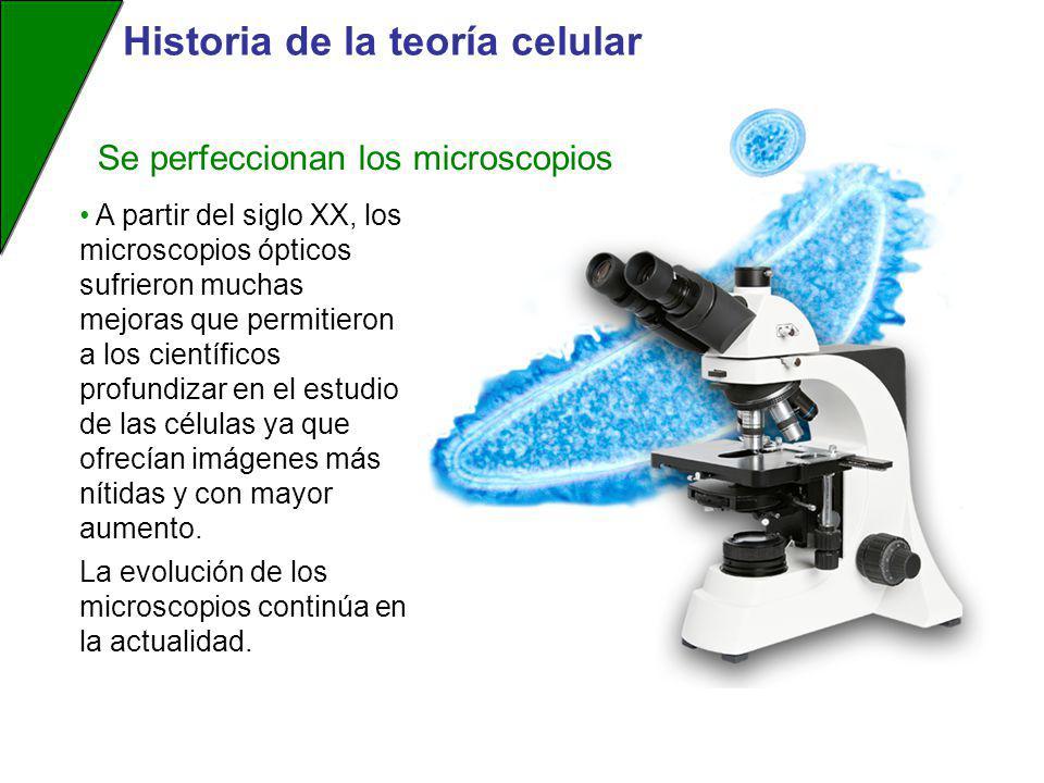 Historia de la teoría celular A partir del siglo XX, los microscopios ópticos sufrieron muchas mejoras que permitieron a los científicos profundizar e