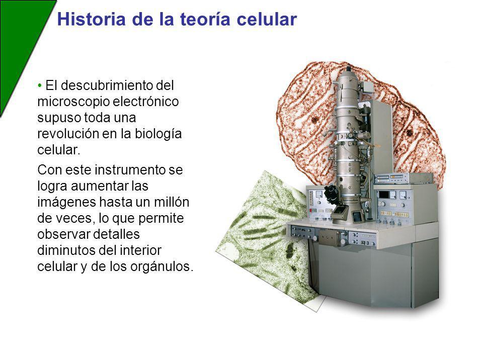 Historia de la teoría celular El descubrimiento del microscopio electrónico supuso toda una revolución en la biología celular. Con este instrumento se