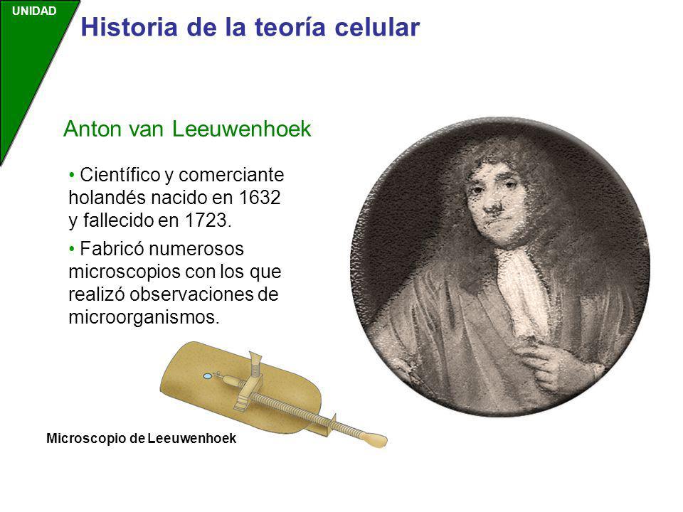 UNIDAD Científico y comerciante holandés nacido en 1632 y fallecido en 1723. Fabricó numerosos microscopios con los que realizó observaciones de micro