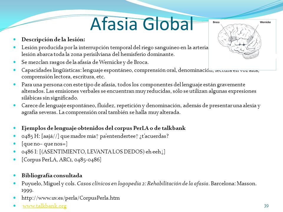 Afasia Global Descripción de la lesión: Lesión producida por la interrupción temporal del riego sanguíneo en la arteria cerebral media. Esta lesión ab