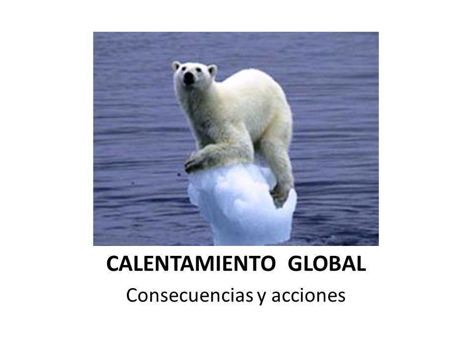 CALENTAMIENTO GLOBAL Consecuencias y acciones