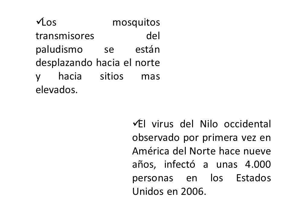 Los mosquitos transmisores del paludismo se están desplazando hacia el norte y hacia sitios mas elevados. El virus del Nilo occidental observado por p