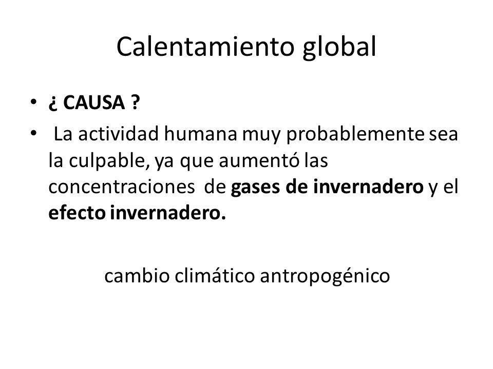 Calentamiento global ¿ CAUSA ? La actividad humana muy probablemente sea la culpable, ya que aumentó las concentraciones de gases de invernadero y el