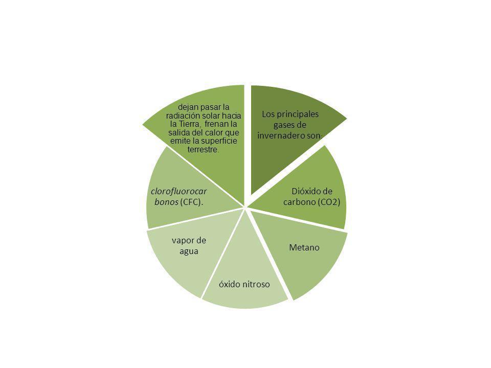 Los principales gases de invernadero son : Dióxido de carbono (CO2) Metano óxido nitroso vapor de agua clorofluorocar bonos (CFC). dejan pasar la radi