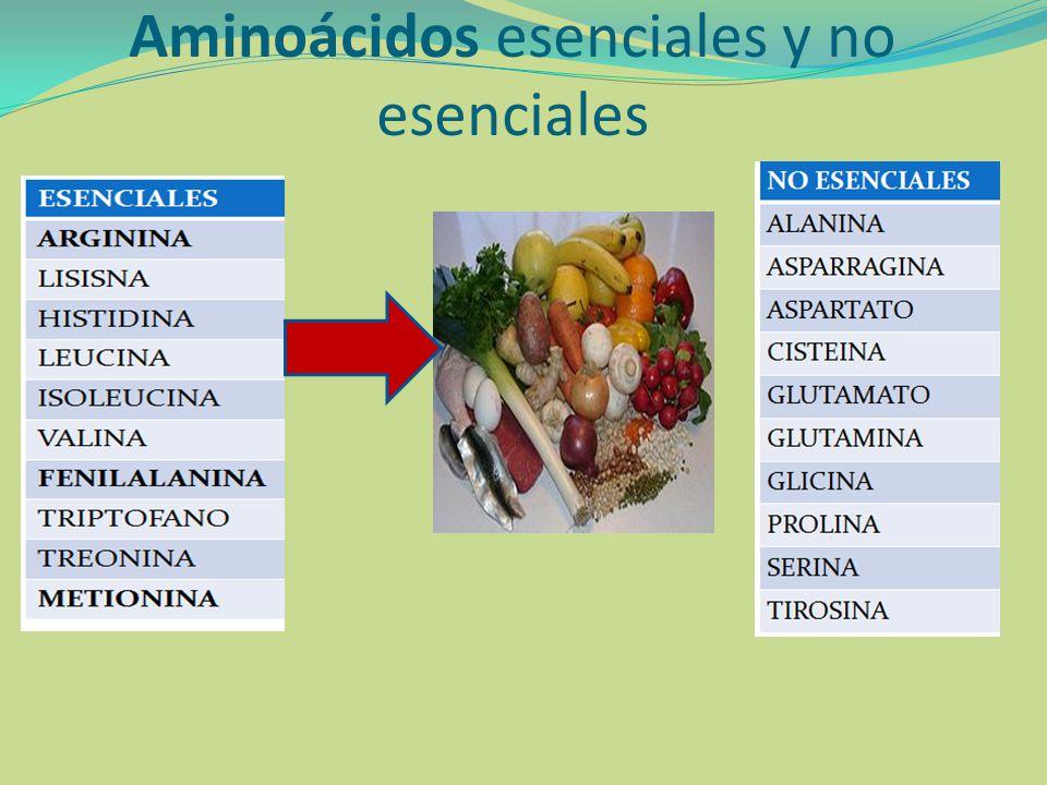 3.Análisis de los residuos terminales.