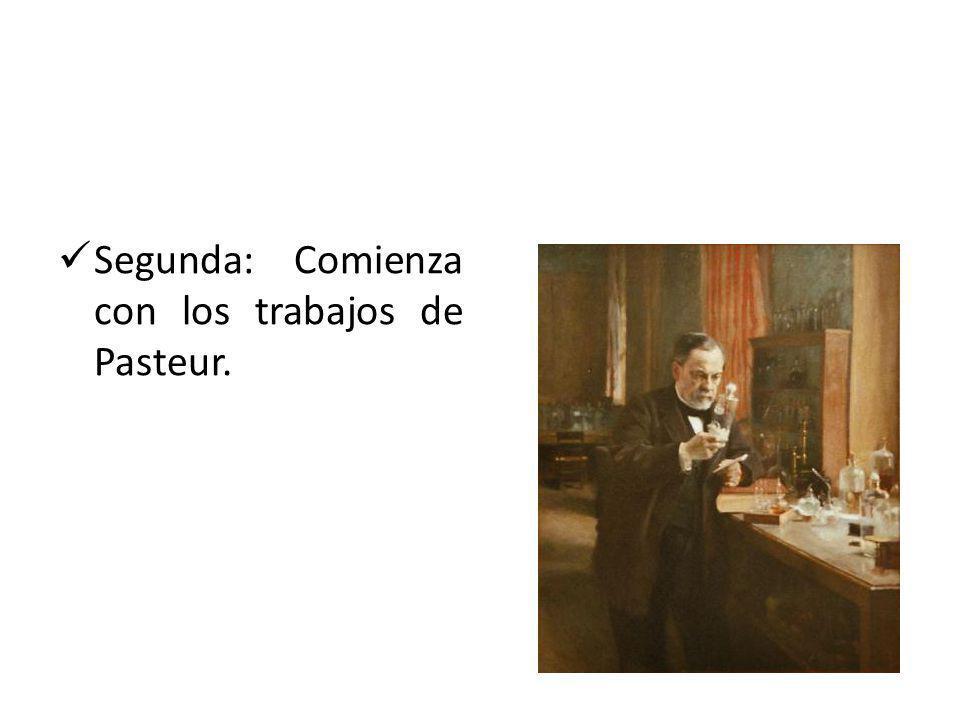 Segunda: Comienza con los trabajos de Pasteur.