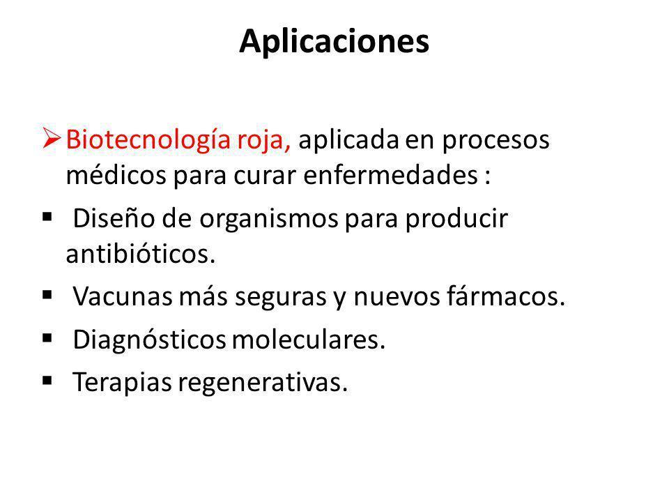 Aplicaciones Biotecnología roja, aplicada en procesos médicos para curar enfermedades : Diseño de organismos para producir antibióticos. Vacunas más s