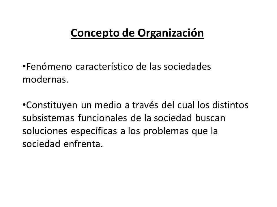 Concepto de Organización Fenómeno característico de las sociedades modernas. Constituyen un medio a través del cual los distintos subsistemas funciona