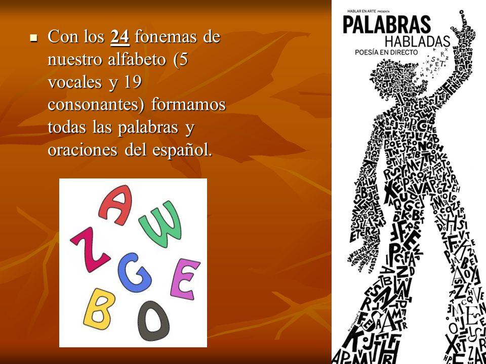 Con los 24 fonemas de nuestro alfabeto (5 vocales y 19 consonantes) formamos todas las palabras y oraciones del español. Con los 24 fonemas de nuestro