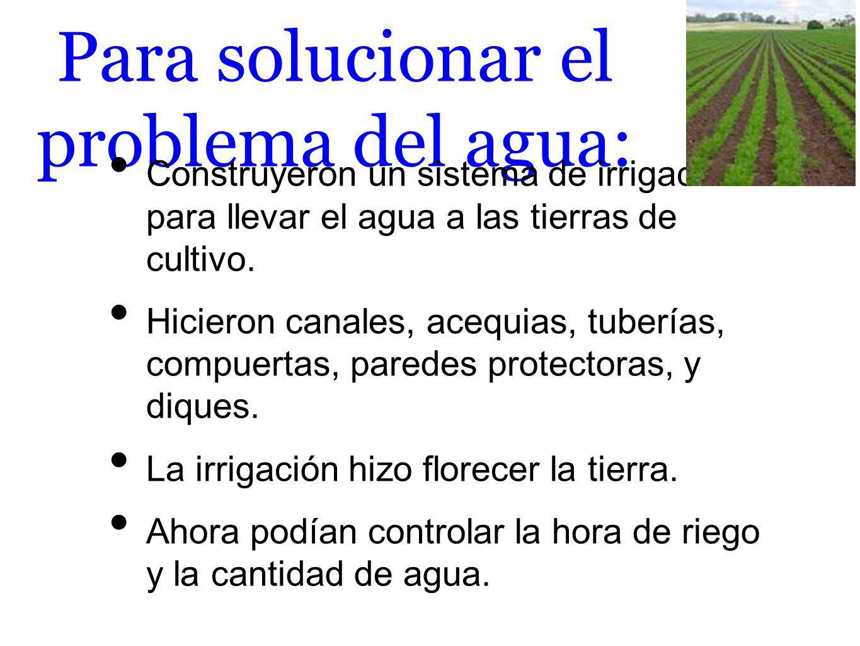 Para solucionar el problema del agua: Construyeron un sistema de irrigación para llevar el agua a las tierras de cultivo. Hicieron canales, acequias,