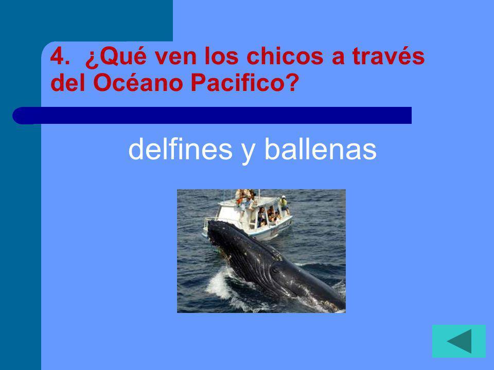 4. ¿Qué ven los chicos a través del Océano Pacifico? delfines y ballenas