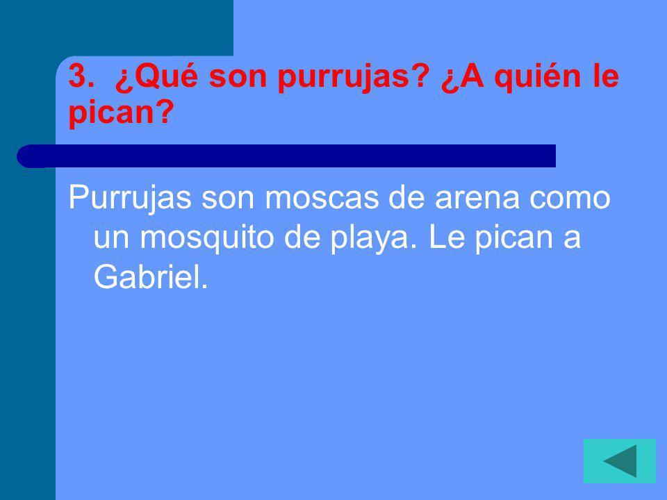 3.¿Qué son purrujas. ¿A quién le pican. Purrujas son moscas de arena como un mosquito de playa.