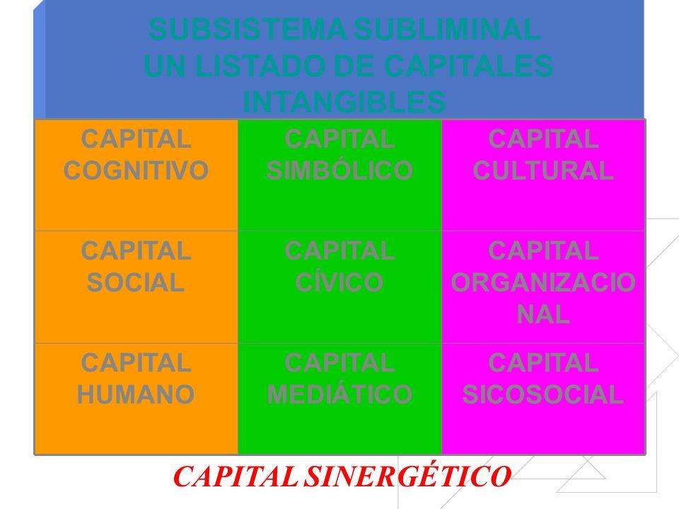 Subsistema axiológico Subsistema decisional Subsistema organizacional Subsistema de acumulación Subsistema subliminal Subsistema procedimental SINAPSI