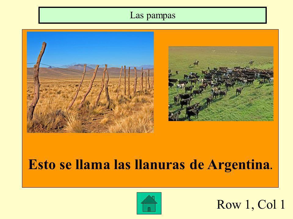 Row 1, Col 1 Esto se llama las llanuras de Argentina. Las pampas