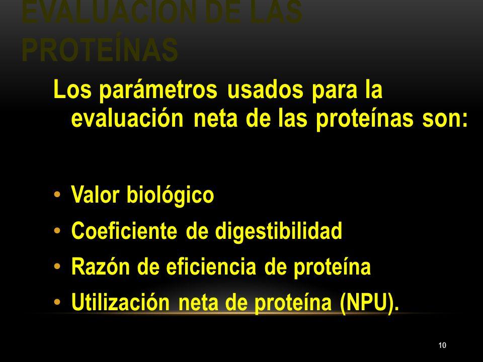 EVALUACIÓN DE LAS PROTEÍNAS 10 Los parámetros usados para la evaluación neta de las proteínas son: Valor biológico Coeficiente de digestibilidad Razón