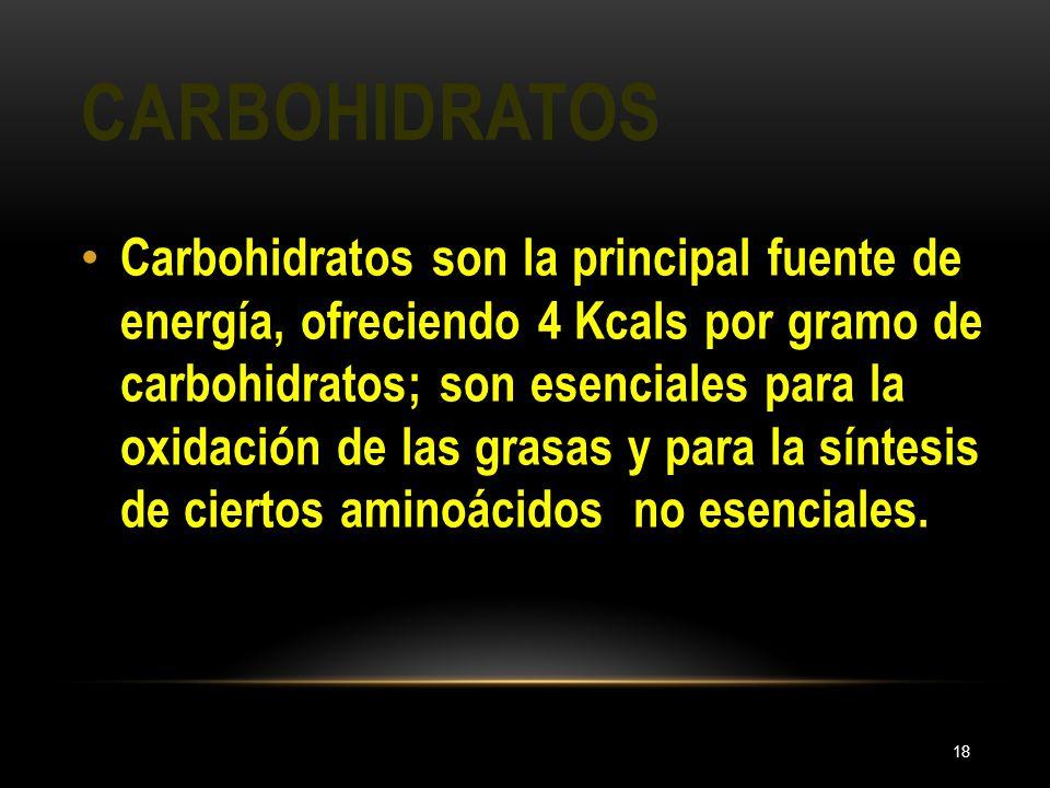 CARBOHIDRATOS 18 Carbohidratos son la principal fuente de energía, ofreciendo 4 Kcals por gramo de carbohidratos; son esenciales para la oxidación de