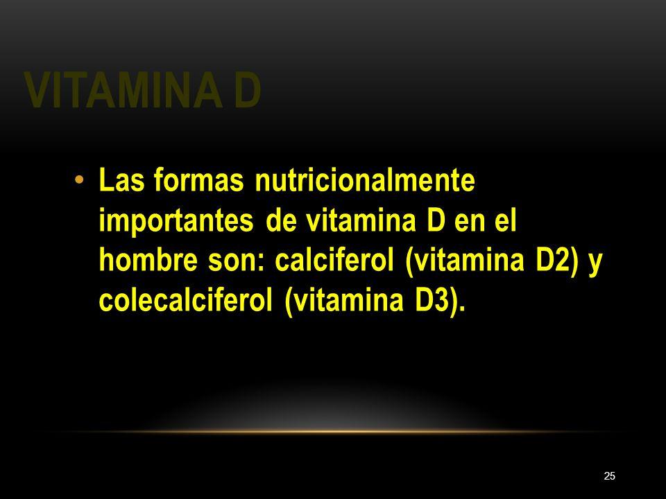 VITAMINA D 25 Las formas nutricionalmente importantes de vitamina D en el hombre son: calciferol (vitamina D2) y colecalciferol (vitamina D3).