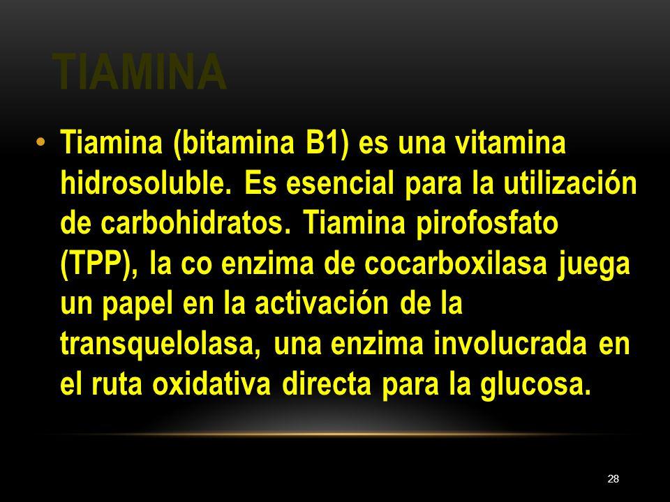 TIAMINA 28 Tiamina (bitamina B1) es una vitamina hidrosoluble. Es esencial para la utilización de carbohidratos. Tiamina pirofosfato (TPP), la co enzi