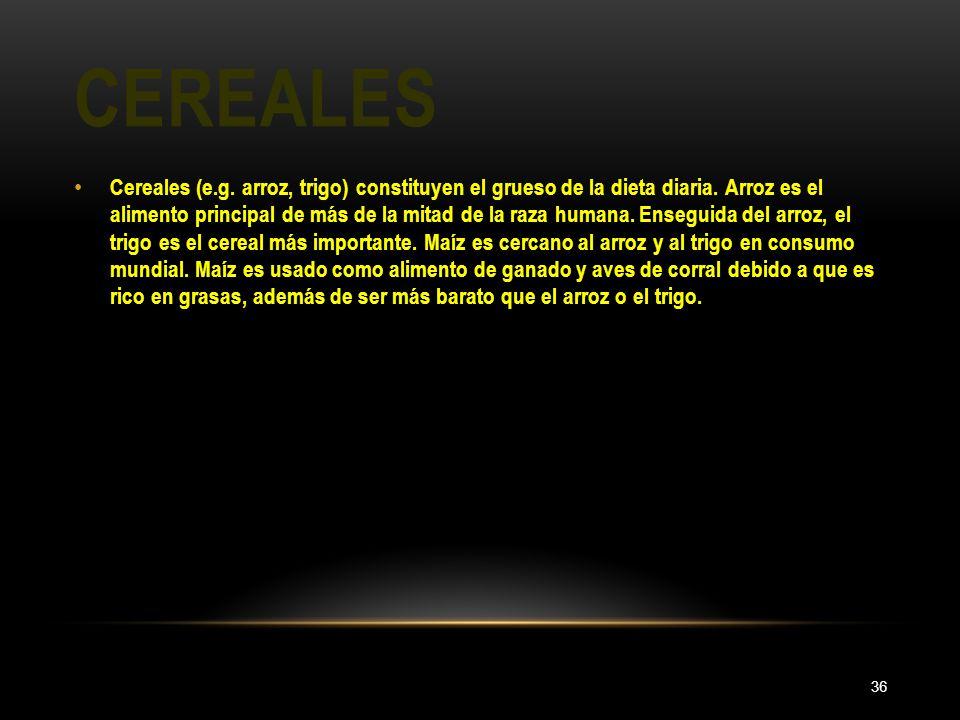 CEREALES 36 Cereales (e.g. arroz, trigo) constituyen el grueso de la dieta diaria. Arroz es el alimento principal de más de la mitad de la raza humana