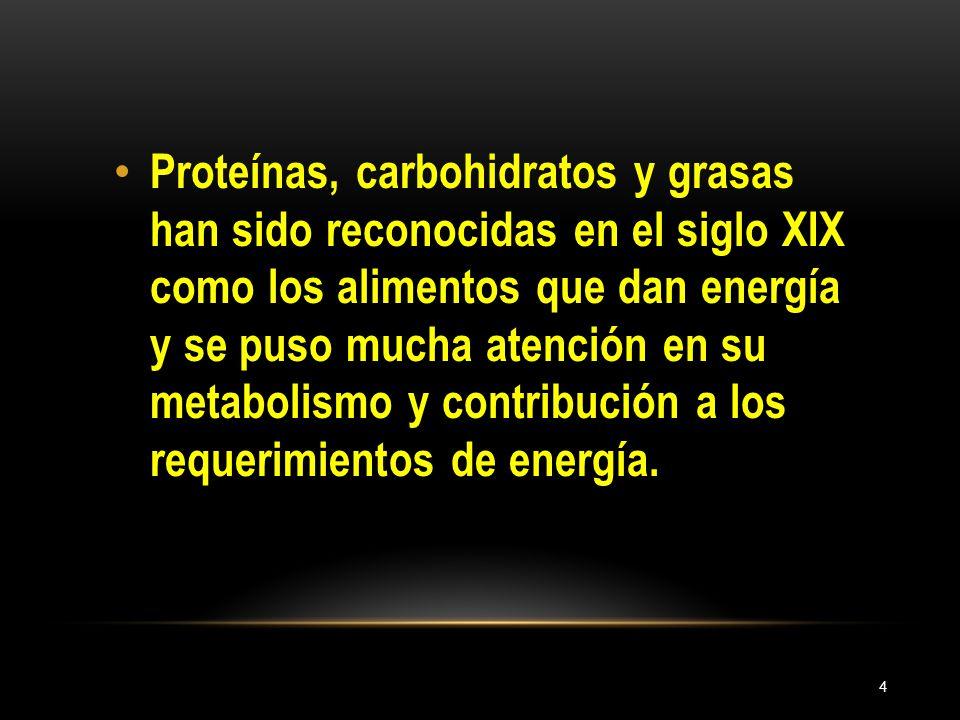 4 Proteínas, carbohidratos y grasas han sido reconocidas en el siglo XIX como los alimentos que dan energía y se puso mucha atención en su metabolismo