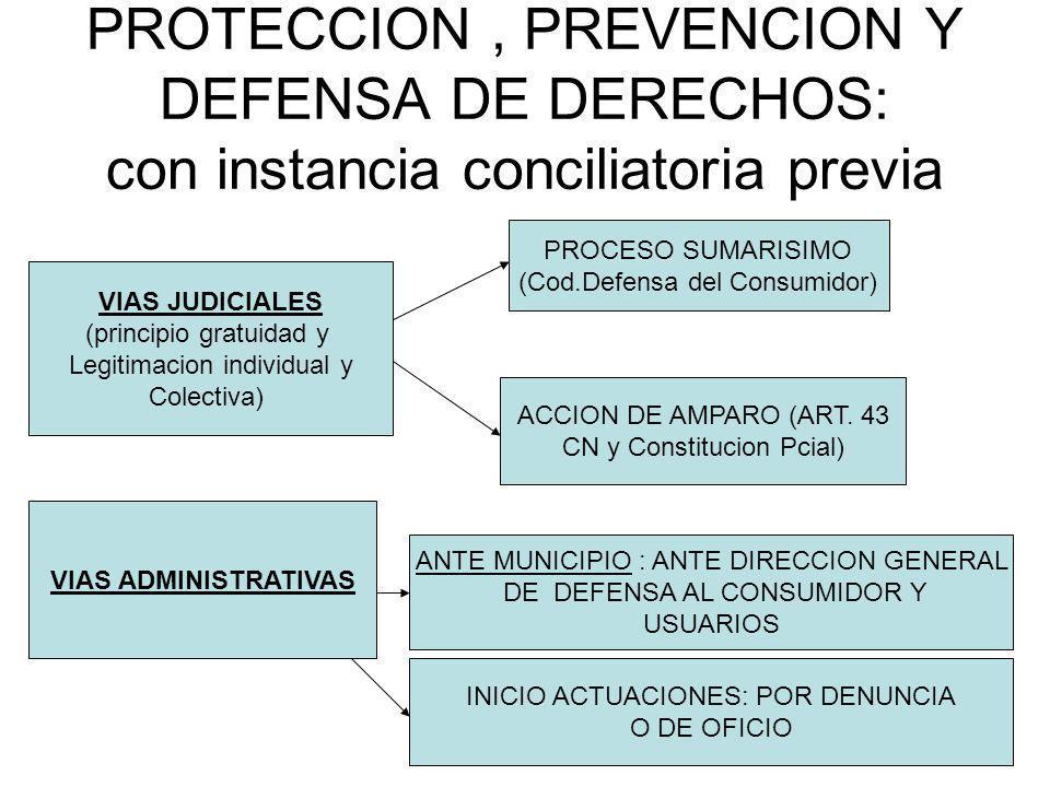 PROTECCION, PREVENCION Y DEFENSA DE DERECHOS: con instancia conciliatoria previa VIAS JUDICIALES (principio gratuidad y Legitimacion individual y Cole