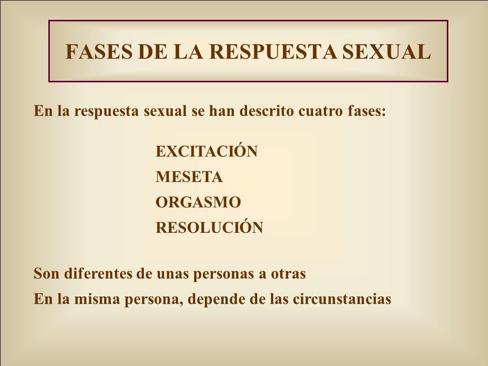 FASES DE LA RESPUESTA SEXUAL En la respuesta sexual se han descrito cuatro fases: EXCITACIÓN MESETA ORGASMO RESOLUCIÓN Son diferentes de unas personas