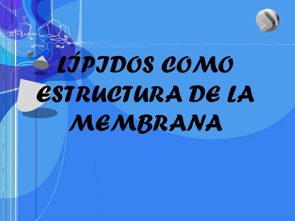 LÍPIDOS COMO ESTRUCTURA DE LA MEMBRANA