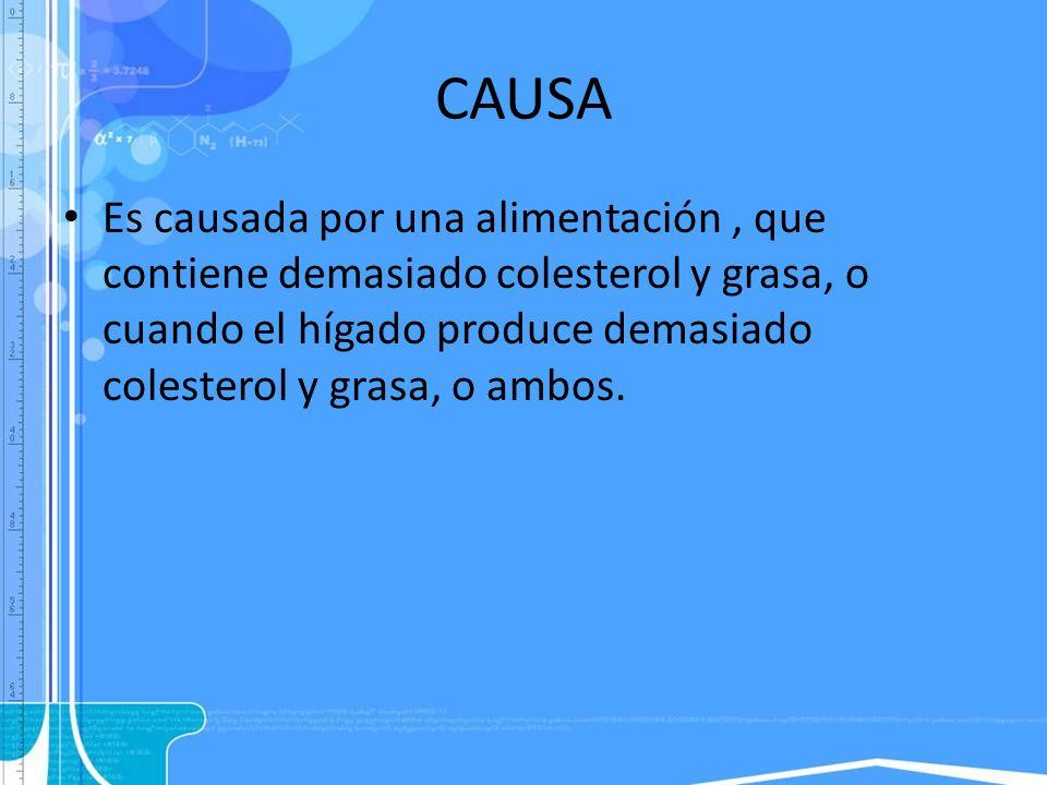 CAUSA Es causada por una alimentación, que contiene demasiado colesterol y grasa, o cuando el hígado produce demasiado colesterol y grasa, o ambos.
