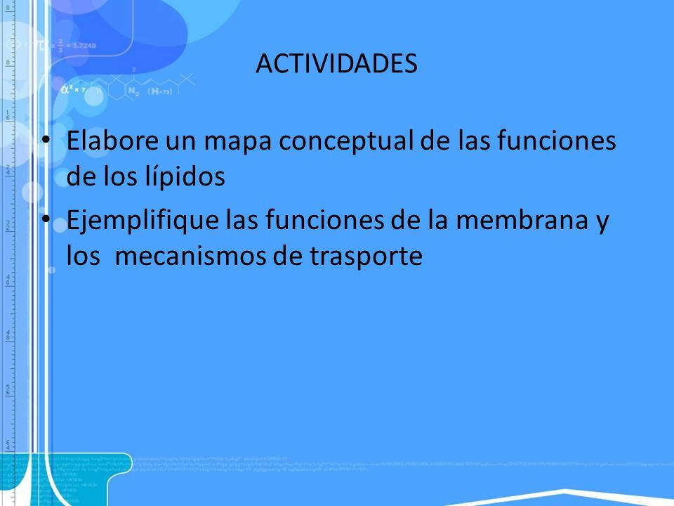 ACTIVIDADES Elabore un mapa conceptual de las funciones de los lípidos Ejemplifique las funciones de la membrana y los mecanismos de trasporte