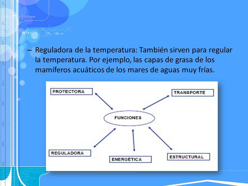 – Reguladora de la temperatura: También sirven para regular la temperatura. Por ejemplo, las capas de grasa de los mamíferos acuáticos de los mares de