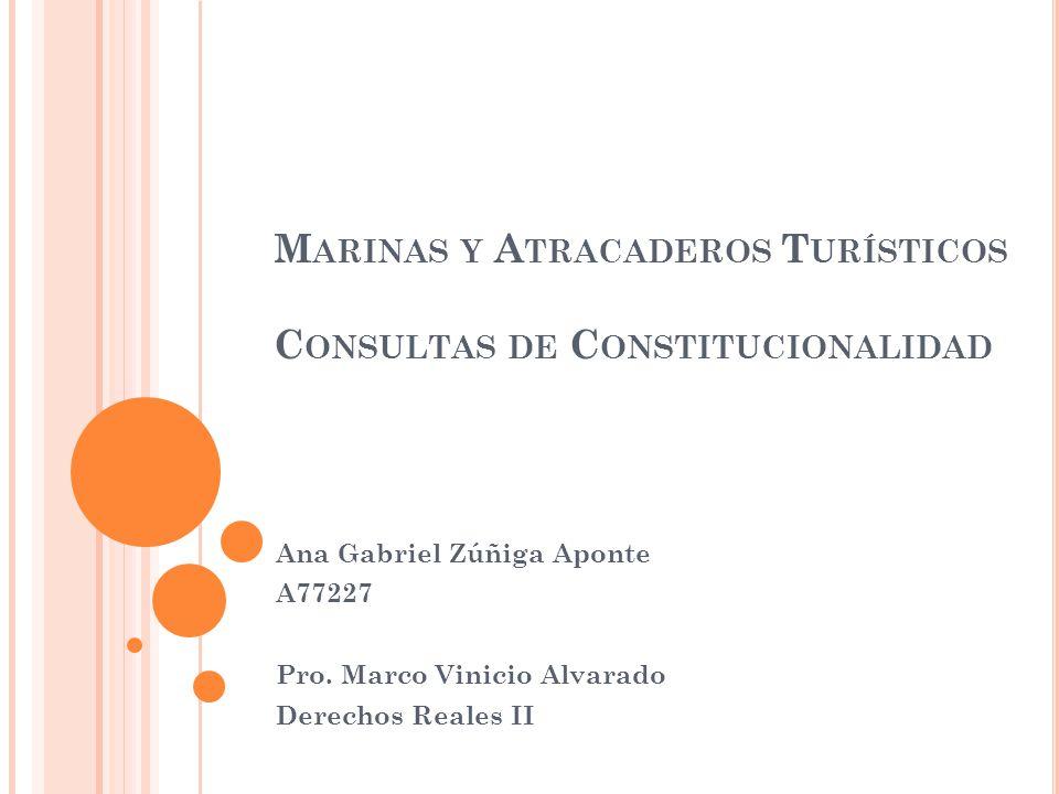 M ARINAS Y A TRACADEROS T URÍSTICOS C ONSULTAS DE C ONSTITUCIONALIDAD Ana Gabriel Zúñiga Aponte A77227 Pro.