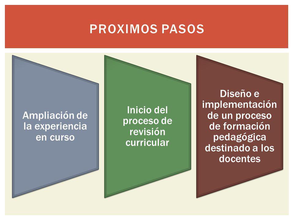 Ampliación de la experiencia en curso Inicio del proceso de revisión curricular Diseño e implementación de un proceso de formación pedagógica destinad