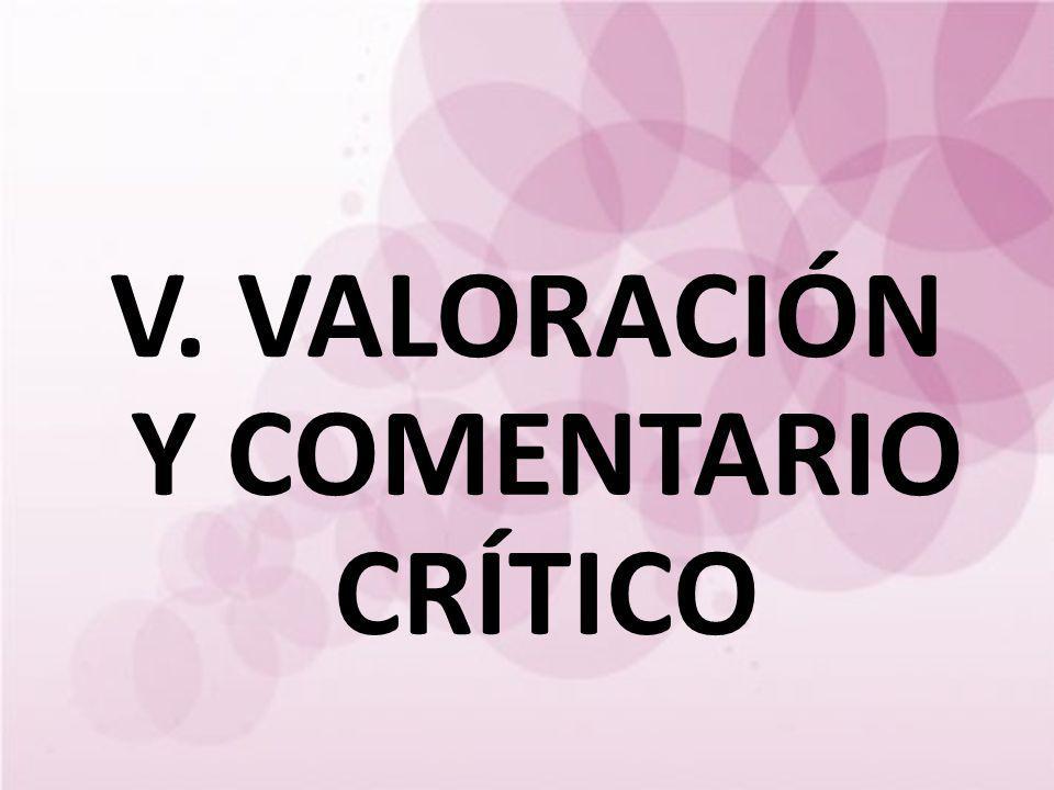 V. VALORACIÓN Y COMENTARIO CRÍTICO