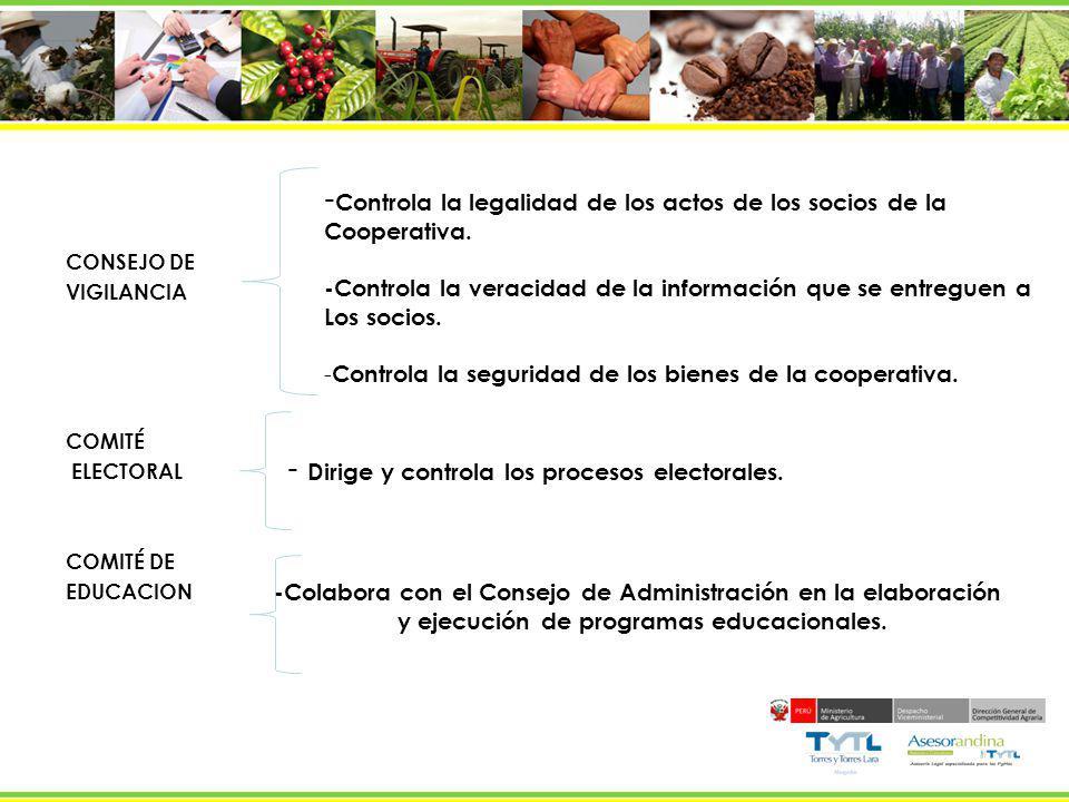 CONSEJO DE VIGILANCIA COMITÉ ELECTORAL COMITÉ DE EDUCACION - Controla la legalidad de los actos de los socios de la Cooperativa. -Controla la veracida