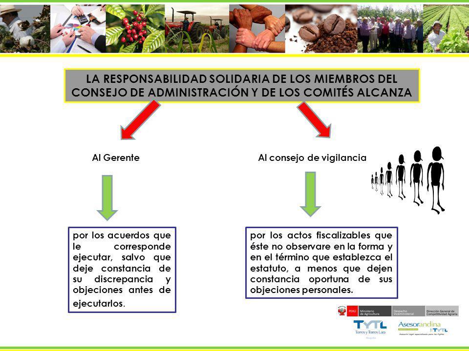 LA RESPONSABILIDAD SOLIDARIA DE LOS MIEMBROS DEL CONSEJO DE ADMINISTRACIÓN Y DE LOS COMITÉS ALCANZA Al Gerente por los acuerdos que le corresponde eje