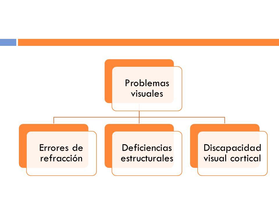 Problemas visuales Errores de refracción Deficiencias estructurales Discapacidad visual cortical