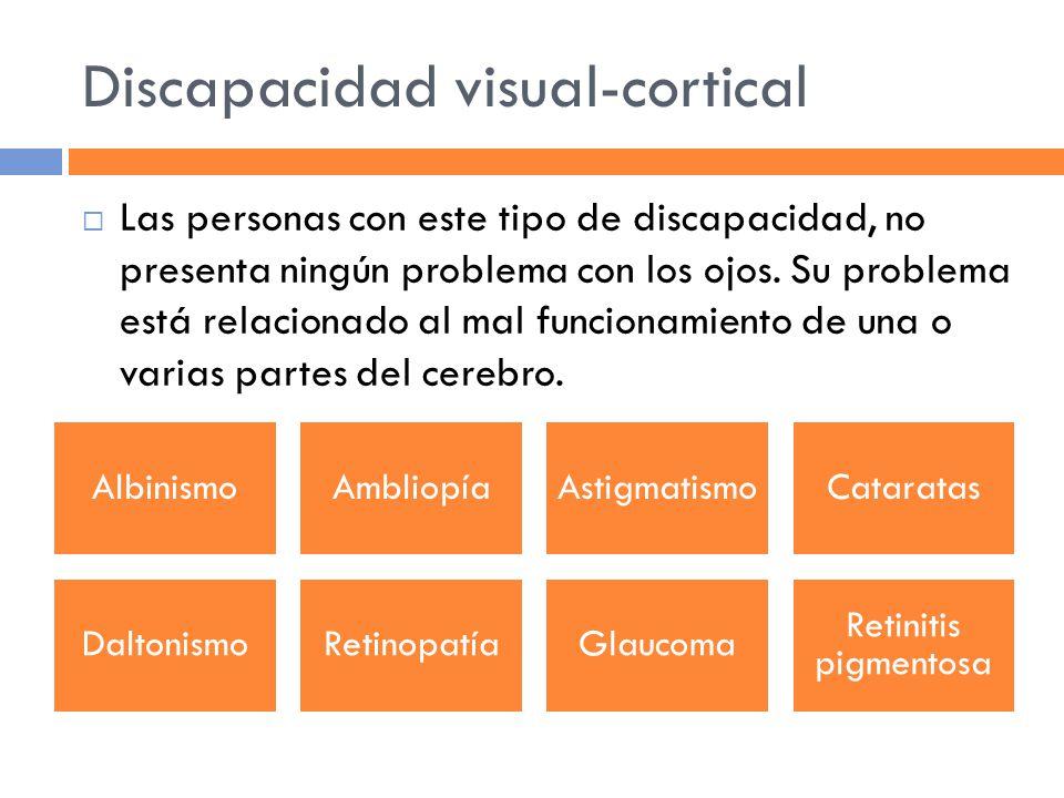 Discapacidad visual-cortical Las personas con este tipo de discapacidad, no presenta ningún problema con los ojos.