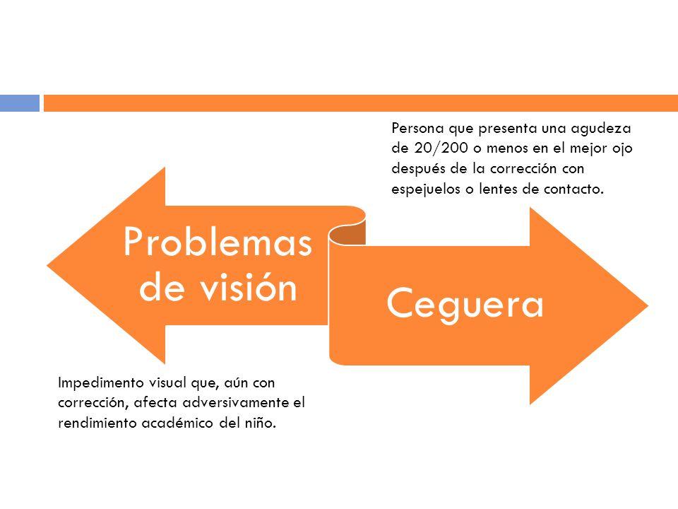 Problemas de visión Ceguera Impedimento visual que, aún con corrección, afecta adversivamente el rendimiento académico del niño.