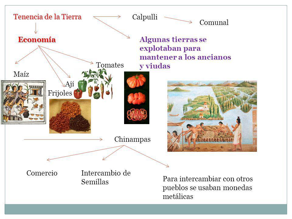 Cultura Azteca Politeístas Quetzalcoalth Su dios principal fue Quetzalcoalth Sacrificios humanos Escritura jeroglífica Calendario Azteca Números Juego de pelota Pirámides