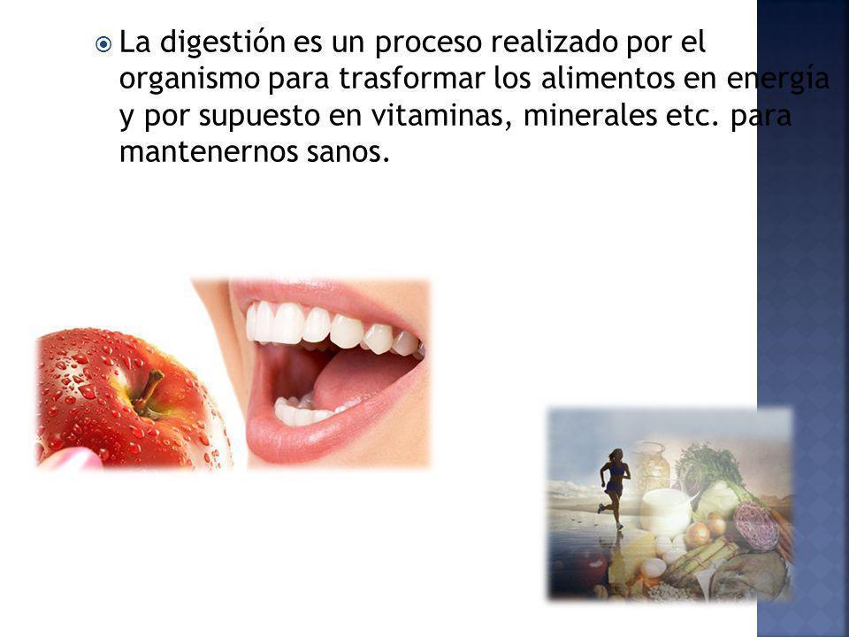 La digestión es un proceso realizado por el organismo para trasformar los alimentos en energía y por supuesto en vitaminas, minerales etc. para manten