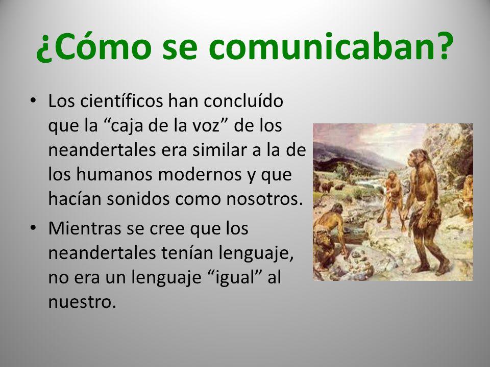 ¿Cómo se comunicaban? Los científicos han concluído que la caja de la voz de los neandertales era similar a la de los humanos modernos y que hacían so