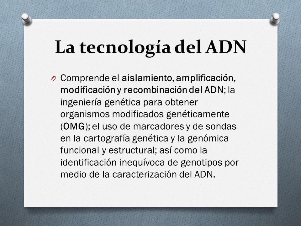 La tecnología del ADN O Comprende el aislamiento, amplificación, modificación y recombinación del ADN; la ingeniería genética para obtener organismos